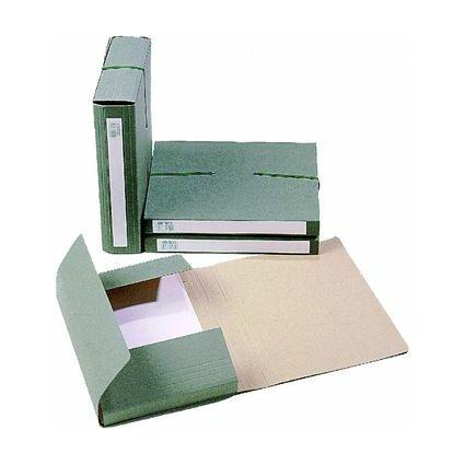 extendos Sammelbox 1240, für DIN A4, aus Karton, grün