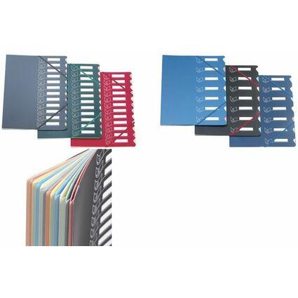 extendos Ordnungsmappe 437, DIN A4, 7 Taben farbig sortiert