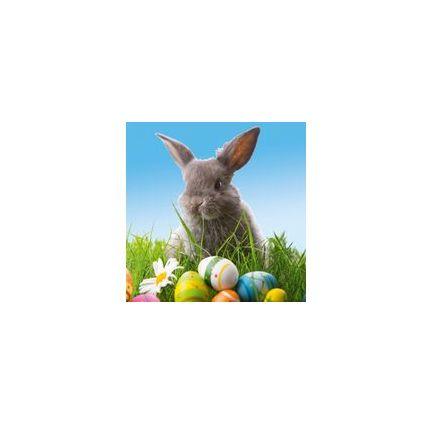 "SUSY CARD Oster-Motivservietten ""Cute bunny"""