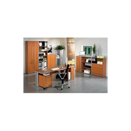 Wellemöbel Büromöbel-Kombination 4 \