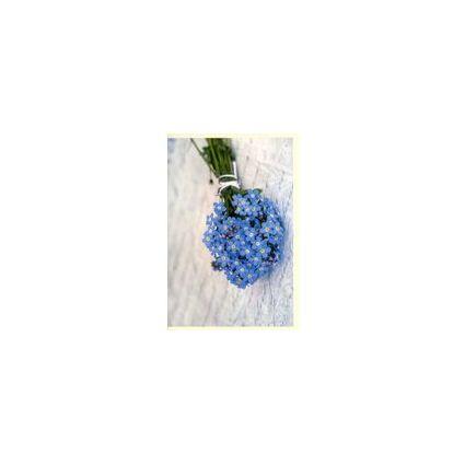 HORN Grußkarte - Allgemein - Blumen in Gießkanne