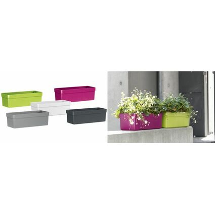 emsa Blumenkasten AQUA PLUS CITY, (B)480 mm, weiß