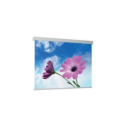 MEDIUM Leinwand Electric Exclusiv Pro (B)2.400 x (H)1.800 mm