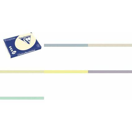 Clairalfa Multifunktionspapier Trophée, A3, hellblau