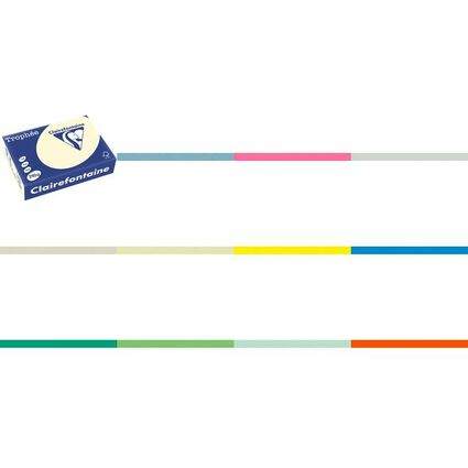 Clairalfa Multifunktionspapier Trophée, A4, tannengrün