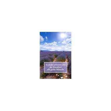 HORN Genesungs-Grußkarte - Lavendelfeld - inkl. Umschlag