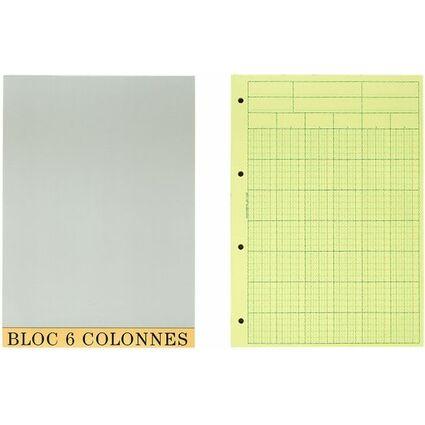 EXACOMPTA Bloc comptable, 297 x 210 mm, 6 colonnes, 70 fls.
