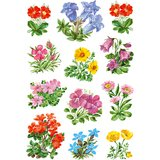"HERMA sticker DECOR ""Gebirgsblumen"""