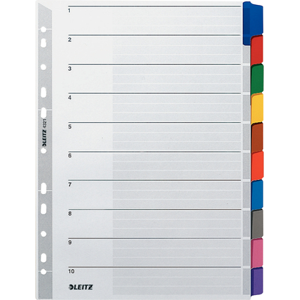 LEITZ Mylarkarton-Register, blanko, A4, 10-teilig, grau