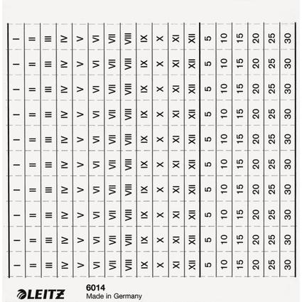 LEITZ Organisationsstreifen für Sichtleisten 6011, weiß