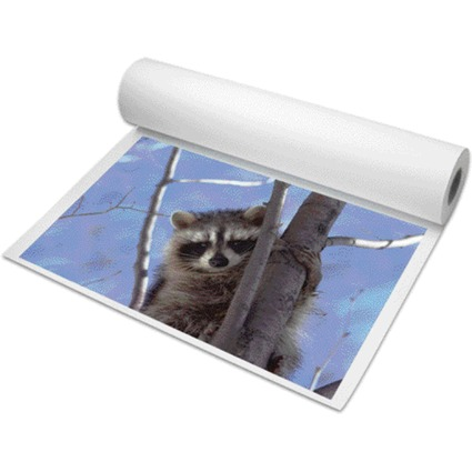 PAPYRUS Inkjet-Plotterrolle, 914 mm x 30 m, weiß, matt
