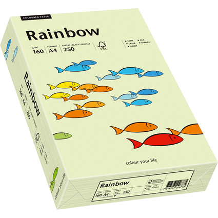 PAPYRUS Multifunktionspapier Rainbow, A4, 160 g/qm, hellgrün