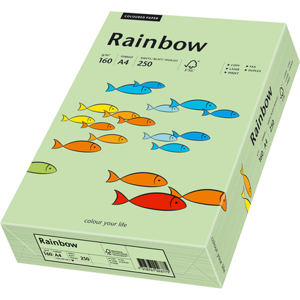 PAPYRUS Multifunktionspapier Rainbow, A4, mittelgrün