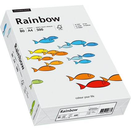 PAPYRUS Multifunktionspapier Rainbow, A4, 80 g/qm, hellgrau