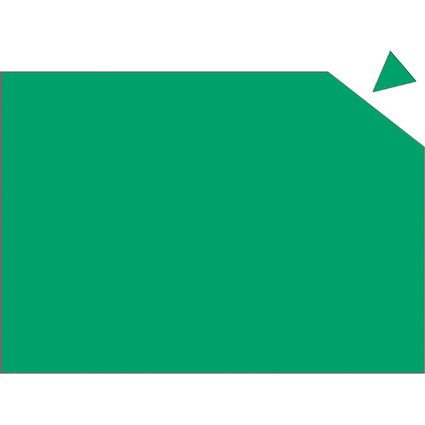 FRANKEN Magnetplatte, 200 x 295 x 0,6 mm, grün