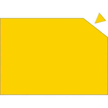 FRANKEN Magnetplatte, 200 x 295 x 0,6 mm, gelb
