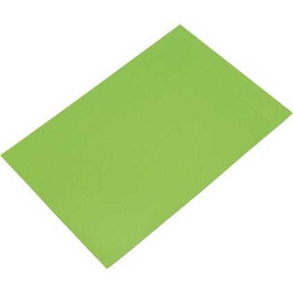 FRANKEN Magnetplatte, 200 x 295 x 0,6 mm, hellgrün