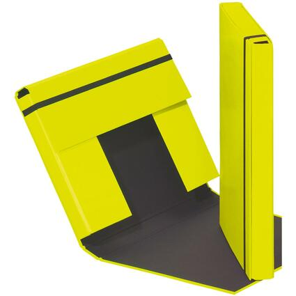"PAGNA Heftbox ""Trend Colours"", DIN A4, lindgrün"
