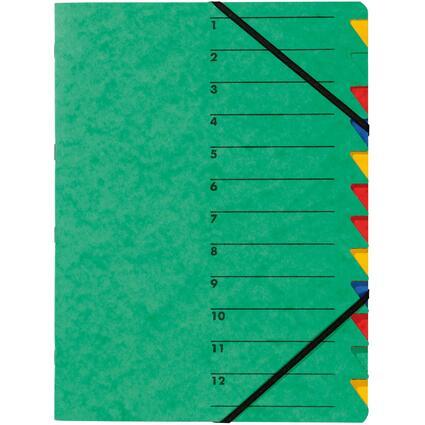 "PAGNA Ordnungsmappe ""EASY"", DIN A4, Karton, 12 Fächer, grün"