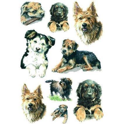 "HERMA Sticker DECOR ""Hunde"""