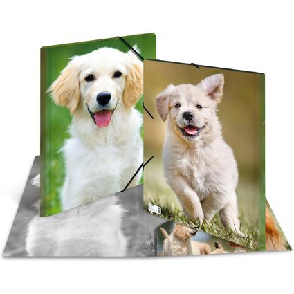 "HERMA Eckspannermappe ""Hunde"", aus PP, DIN A3"