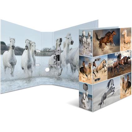 """HERMA Motivordner """"Animals"""", DIN A4, Pferde"""
