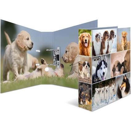 "HERMA Motivordner ""Animals"", DIN A4, Hunde"