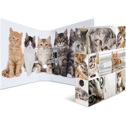 """HERMA Motivordner """"Animals"""", DIN A4, Katzen"""