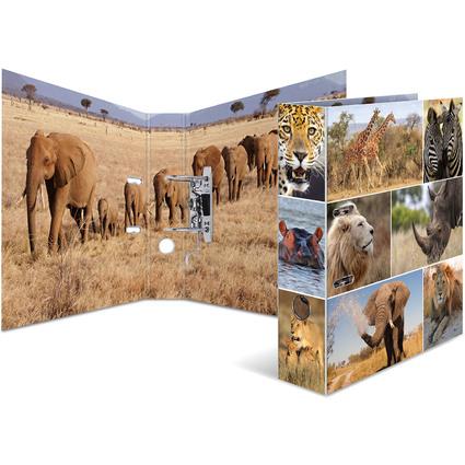"""HERMA Motivordner """"Animals"""", DIN A4, Afrika Tiere"""