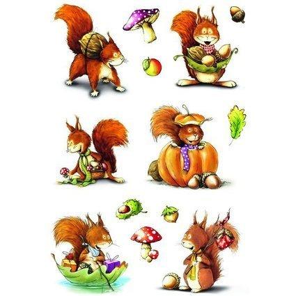 """HERMA Sticker DECOR """"Eichhörnchen"""""""