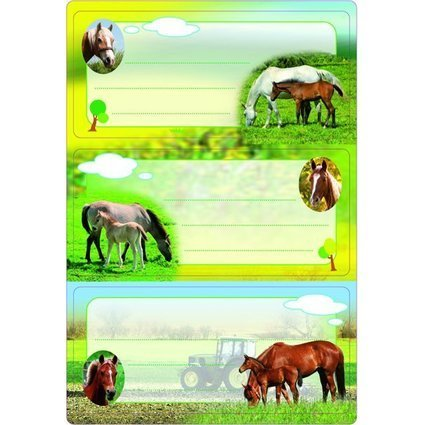 "HERMA Buchetiketten ""Pferde"", 76 x 35 mm"