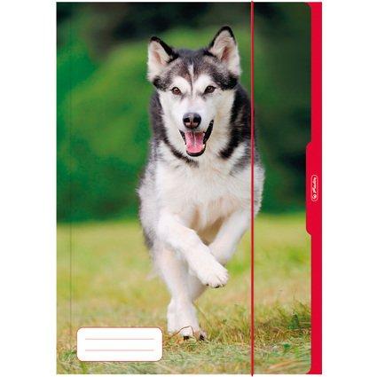 herlitz Zeichnungsmappe/Sammelmappe DIN A3, Motiv: Hund