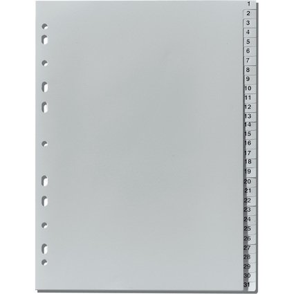 herlitz Kunststoff-Register, Zahlen, A4, 31-teilig, grau