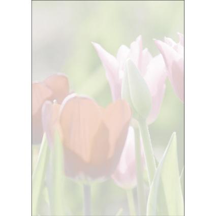"""sigel Design-Papier, DIN A4, 90 g/qm, Motiv """"Spring fever"""""""