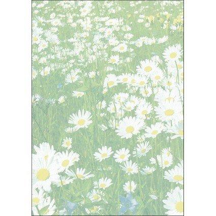 """sigel Design-Papier, DIN A4, 90 g/qm, Motiv """"Spring"""""""