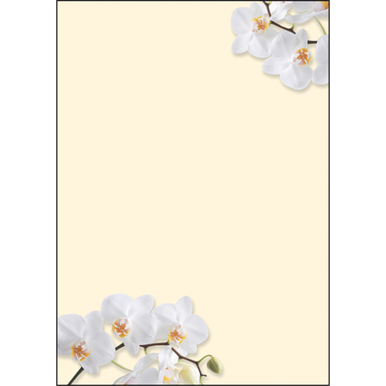 "sigel Design-Papier, DIN A4, 90 g/qm, Motiv ""White Orchid"""