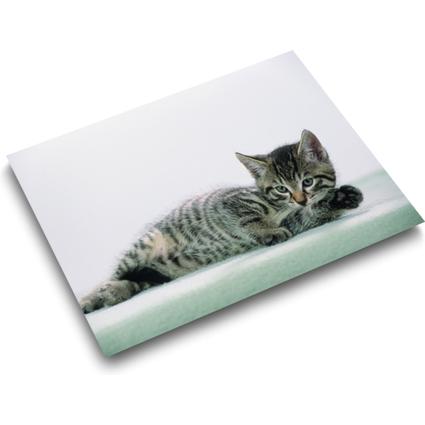 Läufer Schreibunterlage Katze grau, 400 x 530 mm
