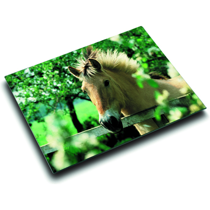 Läufer Schreibunterlage Pferd am Weidezaun, 400 x 530 mm