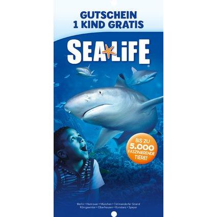 """RNK Verlag Zeichnungsmappe """"Sea Life"""", DIN A3"""
