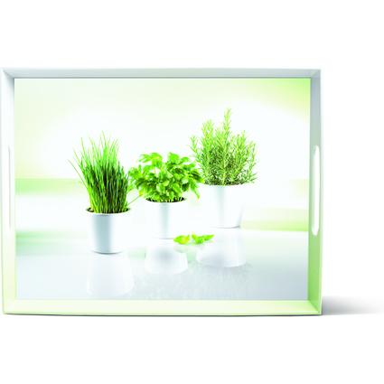 emsa Serviertablett CLASSIC, Motiv: Herbs, 400 x 310 mm
