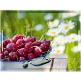 emsa serviertablett CLASSIC, Motiv: Cherries, 400 x 310 mm