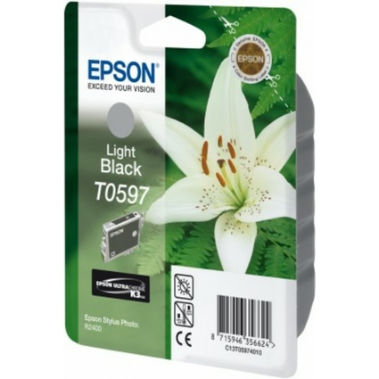 Original Tinte für EPSON Stylus Photo R2400, light black