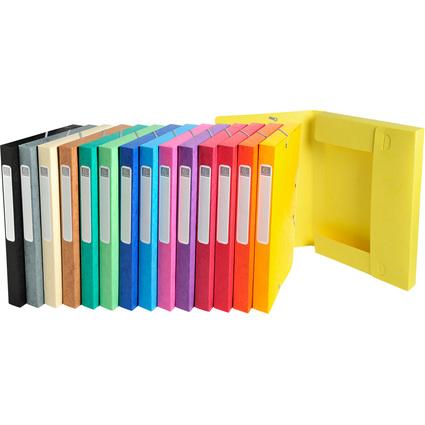 EXACOMPTA Sammelbox Cartobox, DIN A4, 25 mm, farbig sortiert