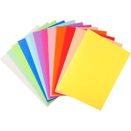 EXACOMPTA Aktendeckel FOREVER 250, DIN A4, farbig sortiert