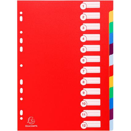 EXACOMPTA Kunststoff-Register, blanko, A4, 12-teilig
