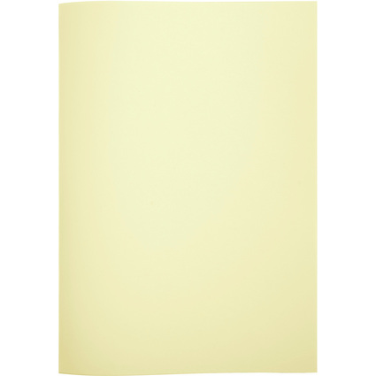 EXACOMPTA Sous-chemises Cotes de plaidoiries, jaune