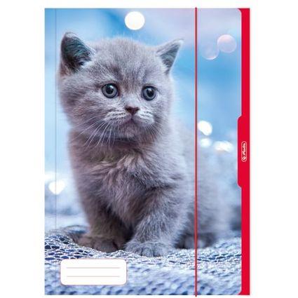 """herlitz Zeichnungsmappe """"Katze"""", DIN A3"""