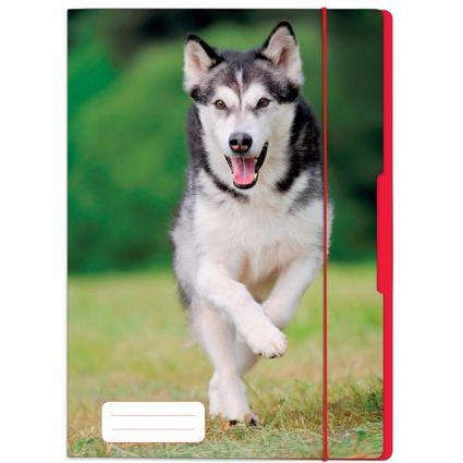 """herlitz Zeichnungsmappe """"Hund"""", DIN A4"""
